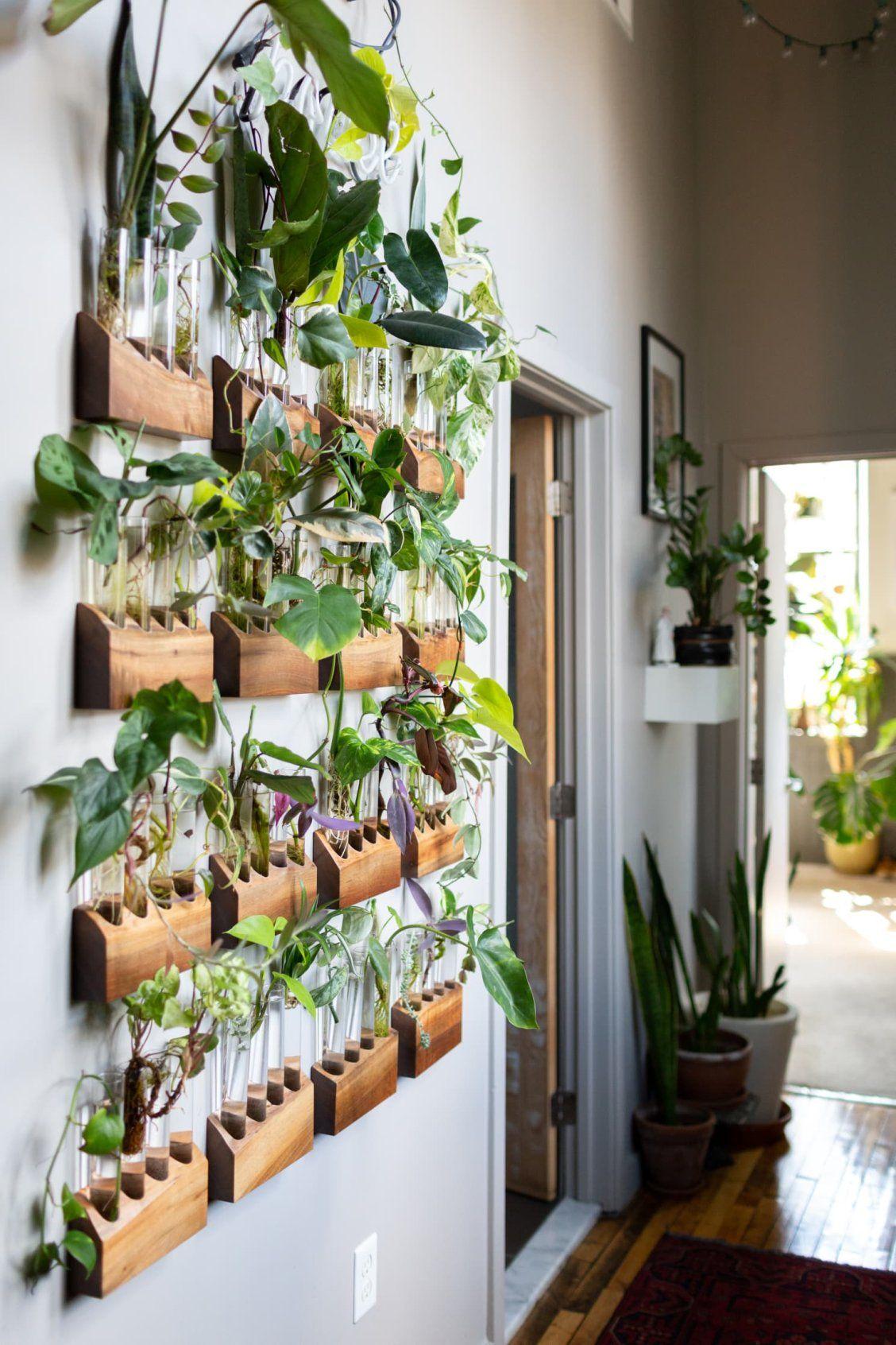 déco en plantes murales